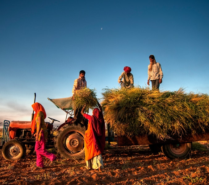 Agriculture - PwC India